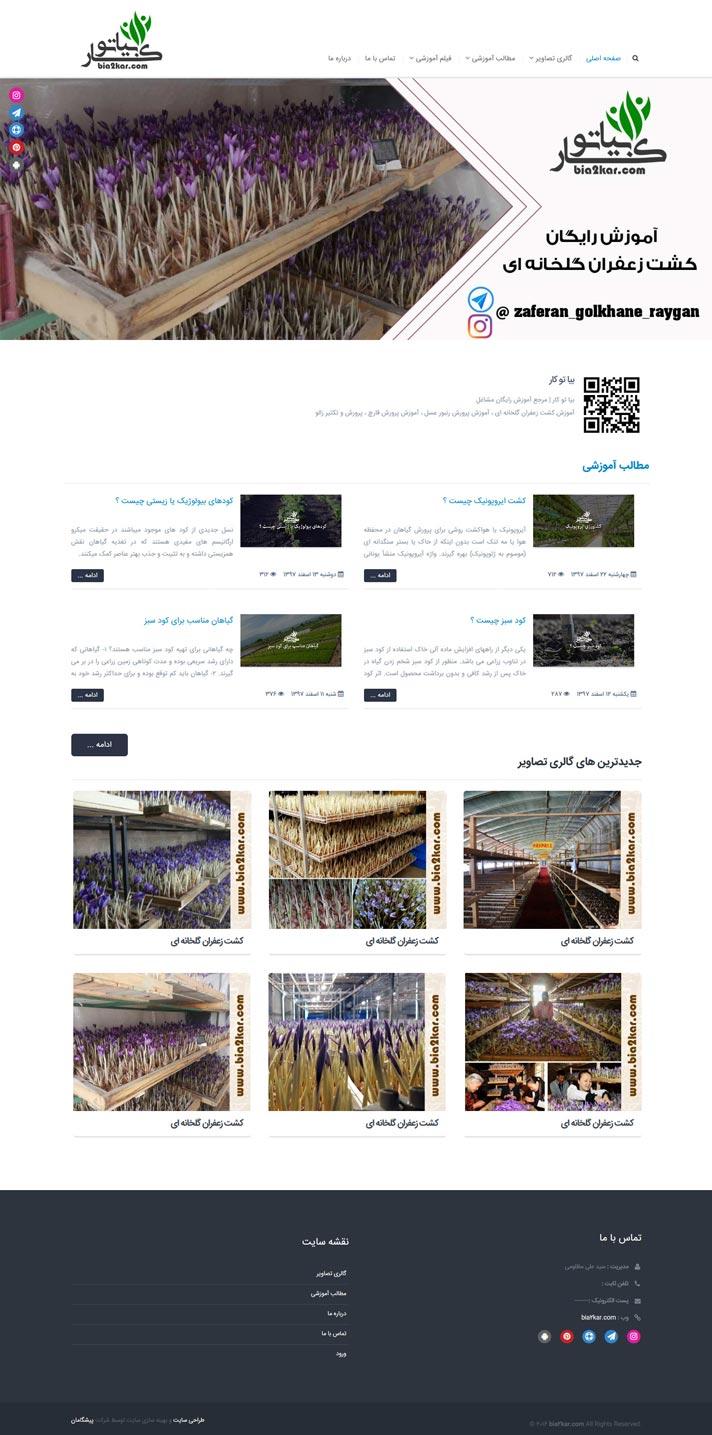 طراحی سایت بیا تو کار