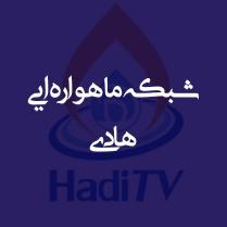 طراحی سایت و سامانه گروه شبکه های ماهواره ایی هادی