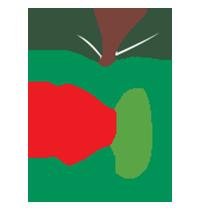 طراحی سایت سیب حیات